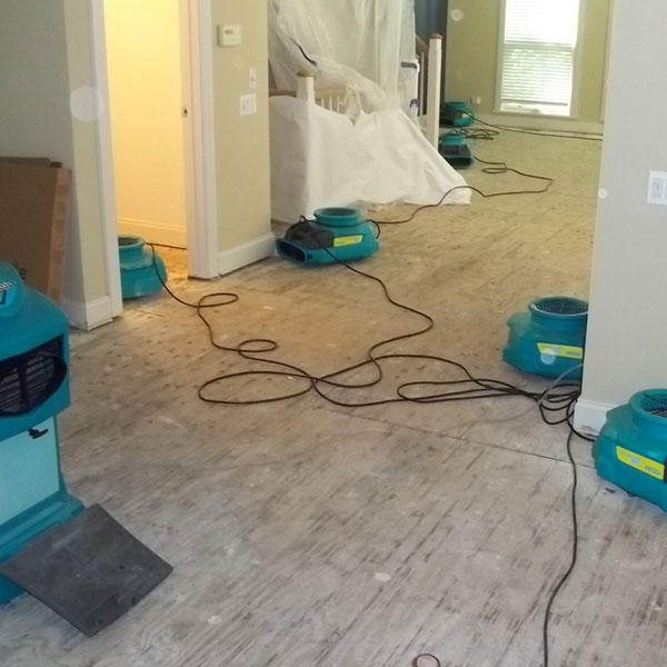 Water Damage Repair Services